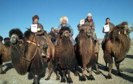 Тэмээний баярыг мөсний баяртай хамтатган хийлээ