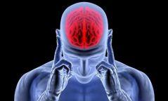 Тархины үйл ажиллагаанд хортой 10 зуршлын талаар та мэдэх үү?