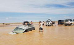 ЦЕГ: Усанд живж, амиа алдсан иргэдийн 90 хувь нь архидан согтуурсан байдаг