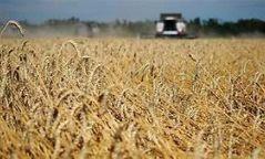 Ургацыг технологийн дагуу богино хугацаанд хураан авахыг зөвлөлөө