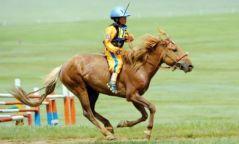 Монгол Улсын алдарт уяач Б.Баттөрийнхалиун азарга түрүүллээ