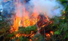 Хөвсгөл аймагт ойн түймэр гарчээ