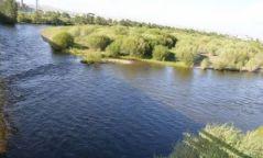 Согтуу иргэн голд живж амиа алджээ