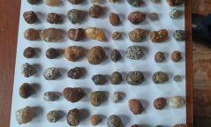 50 кг байгалийн өнгөт чулууг зохих зөвшөөрөлгүй тээвэрлэсэн зөрчил илрэв