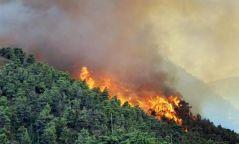 """""""Архангай, Булган, Сэлэнгэ, Төв, Хөвсгөл зэрэг аймаг ой, хээрийн түймрийн өндөр аюул, эрсдэлтэй"""""""