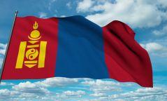 Тойм: Говь-Алтай аймагт буга галзуурч, Шүүгчид огцруулах сахилгын шийтгэл ногдуулсан өдөр