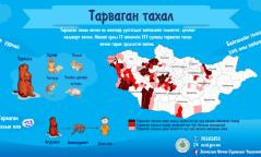Манай улсын 137 сум тарваган тахлын байгалийн голомттой