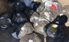Нүүрсэн дунд 509 кг чулуу нуун хил давуулах гэж байсныг илрүүлэв