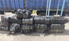 498 кг хатаасан өлөн хууль бусаар хил давуулахыг завджээ