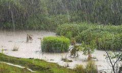 Дуу цахилгаантай бороо орно