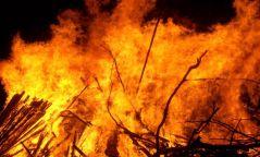 Булган, Дорнод, Сэлэнгэ аймгийн зургаан суманд  зургаан удаагийн ой, хээрийн гал түймэр гарчээ