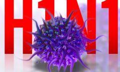 Томуугийн А (H1N1) вирусээр үүсгэгдсэн халдвараас хэрхэн урьдчилан сэргийлэх вэ