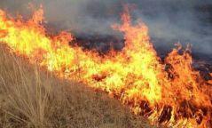 Өнжмөл өвсний түймрээс сэрэмжлүүлж байна