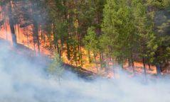 Сэрэмжлүүлэг: Хуурайшилт ихтэй үед ой, хээрт ил задгай гал түлэхээс татгалзаарай