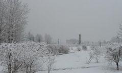 Нийт нутгийн 70 орчим хувьд цасан бүрхүүл тогтжээ