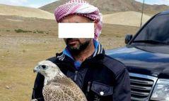 Араб иргэд зөвшөөрөлгүй Шонхор шувуу барьжээ