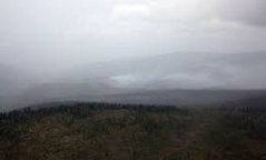 Булган, Дорнод, Сүхбаатар аймгийн 4 суманд нийт 4 удаагийн ой, хээрийн түймэр дуудлага бүртгэгдсэн байна