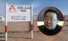 """Ц.Элбэгдоржийн оруулж ирсэн """"Арева Майнз"""" Монголд гай тарьж дуусахгүй нь"""