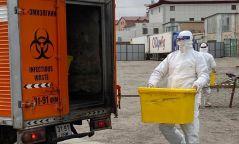Халдварын голомтоос ирсэн орны гудас, матрасыг халдваргүйжүүлж устгалд оруулж байна