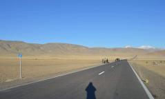 Ноцтой зам тээврийн ослын улмаас гурван хүн амиа алджээ