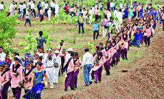 Ажилгүй иргэдээр мод тариулдаг Энэтхэгийн туршлага