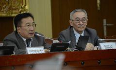 Байнгын хороо: ТТ-н 30 хувийг эдийн засгийн эргэлтэд оруулахыг дэмжив