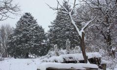 Нойтон цас орж, цочир хүйтэрч, салхи шуургатай байхыг онцгойлон анхааруулж байна.