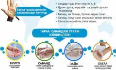 Өнөөдөр Дэлхийн гар угаах өдөр: Бохир гараар дамжин халдварладаг өвчнүүд