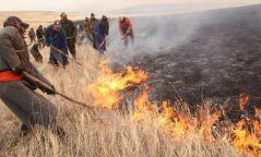 Хэнтийн Батширээтэд ой хээрийн түймэр гарчээ