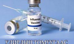 ХӨСҮТ-д улирлын томуугийн вакцин хийж байна