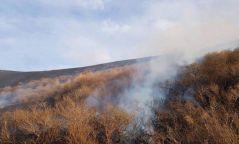 Шилийн богдод түймэр тавьсан байж болзошгүй Улаанбаатарын харьяат таван иргэнийг саатуулжээ