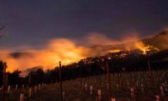 """""""Дарсны өлгий нутаг""""-т түймэр дэгдсэний улмаас 10 хүн амиа алджээ"""