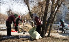 Баянзүрх дүүргийнхэн Туул, Улиастайн гол дагуух 45 тонн хог хаягдал цэвэрлэжээ