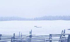 Хөвсгөл аймагт  нойтон цас орж байна