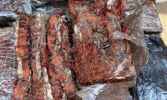 Замын-Үүдийн боомтоор 574 кг адууны өлөн гэдэс, 1,2 тн зэс хууль бусаар гаргахыг завджээ