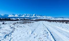 Увс аймгийн Малчин суманд 29 сантиметрийн зузаан цасан бүрхүүл тогтжээ