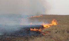 Өвөрхангай аймагт хээрийн түймэр гарч, 10га талбай шатжээ