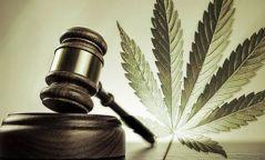 Мансууруулах эм, сэтгэцэд нөлөөт бодисыг хууль бусаар ашигласан 108 хэргийг шүүхэд шилжүүлжээ