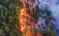 Дорнод аймагт хээрийн түймэр гарч, 152 га талбай шатжээ