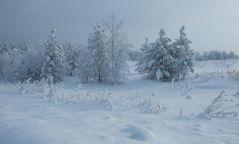 Анхаар: Цас орж цасан шуурга шуурна