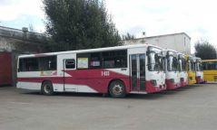 Нийтийн тээвэрт тусгай замын автобус үйлчилнэ