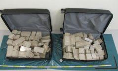Монголын дипломат паспорттой хоёр иргэн Герман руу 70 кг героин нэвтрүүлэх гэж байгаад баригджээ