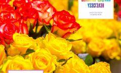 Солонгос цэцгийн үзэсгэлэн