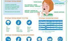 Инфографик: Ургамлын тоосны үед ямар арга хэмжээ авах вэ