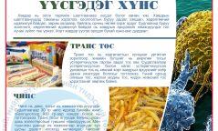 ИНФОГРАФИК: 30 гр чипс идэхэд биеийн жин 900 граммаар нэмэгддэг