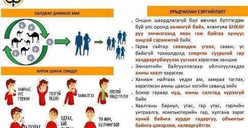 ЭМЯ: Коронавирусийн халдвараас урьдчилан сэргийлэх ЗӨВЛӨМЖ