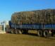 Завхан аймагт 20 тонн өвс ачиж явсан ачааны автомашин шатжээ