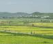 Хойд Солонгоставсан сонирхолтой28-н зураг